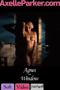 Agnes  - Window