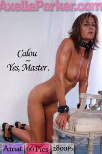 Calou  - Yes Master