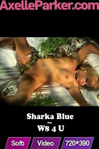 Sharka Blue - W8 4 U