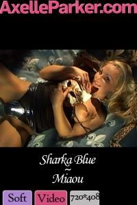 Sharka Blue - Miaou